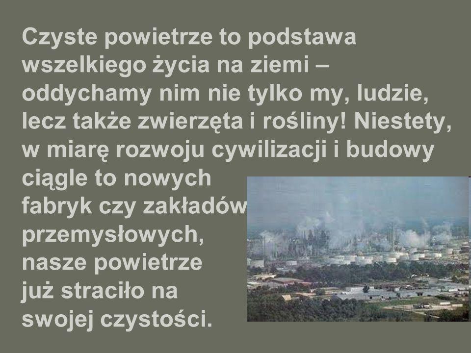 Co gorsza jednak, niektórzy ludzie dokładają się do zanieczyszczenia powietrza w swoim własnym domu, paląc śmieci, które zamiast do pieca, powinny trafić do sortowni, a następnie być poddane recyklingowi.
