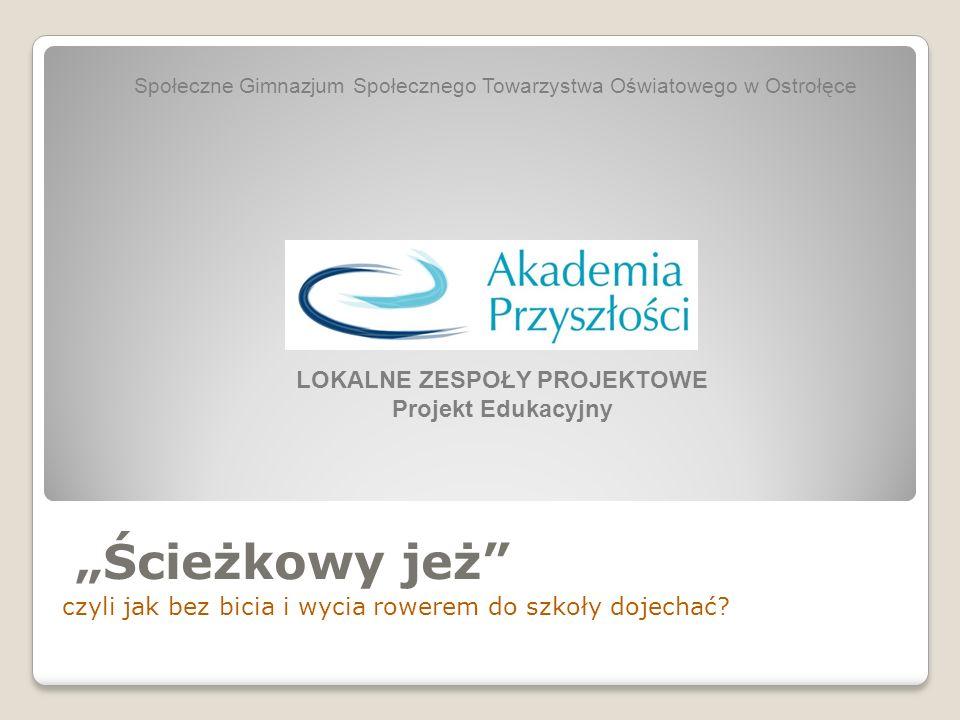 Opis problemu, który realizował szkolny zespół projektowy Nasze gimnazjum mieści się w Wojciechowicach.