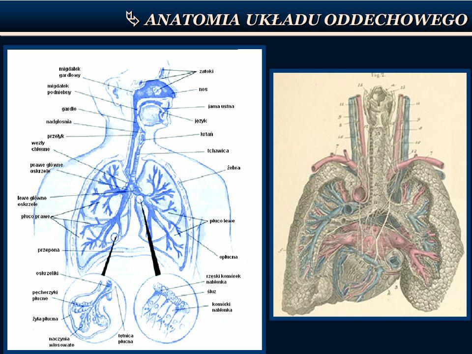 BIOFIZYKA UKŁADU ODDECHOWEGO Ruch powietrza podczas wdechu i wydechu jest spowodowany zmienną różnicą ciśnień miedzy powietrzem atmosferycznym (P a ) a płucami Płuca znajdują się w szczelnie zamkniętej przestrzeni, w którym panuje ciśnienie wewnątrzopłucnowe ( P op ).
