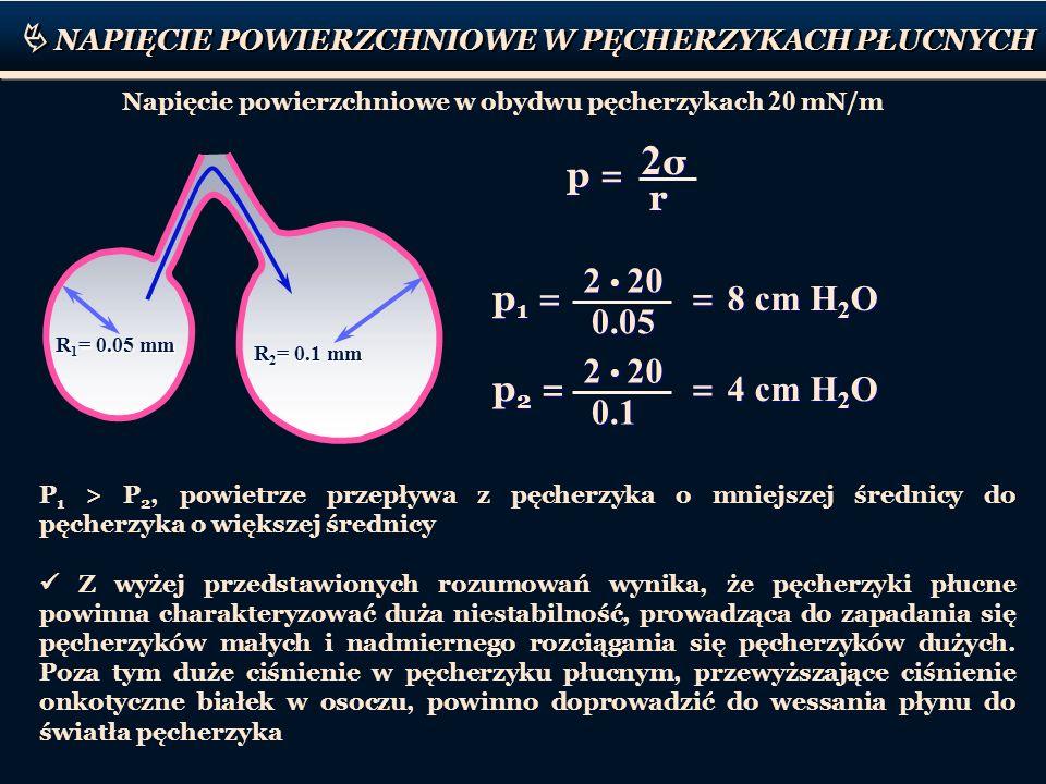 NAPIĘCIE POWIERZCHNIOWE W PĘCHERZYKACH PŁUCNYCH R 1 = 0.05 mm R 2 = 0.1 mm Napięcie powierzchniowe w obydwu pęcherzykach 20 mN/m 2σ2σ 2σ2σ r r p = 2 2
