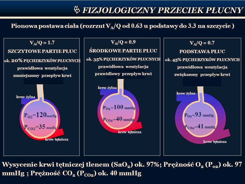 P O2 = 120 mmHg P CO2 = 35 mmHg krew żylna krew tętnicza V A /Q = 1.7 SZCZYTOWE PARTIE PŁUC ok. 20% PĘCHERZYKÓW PŁUCNYCH prawidłowa wentylacja zmniejs