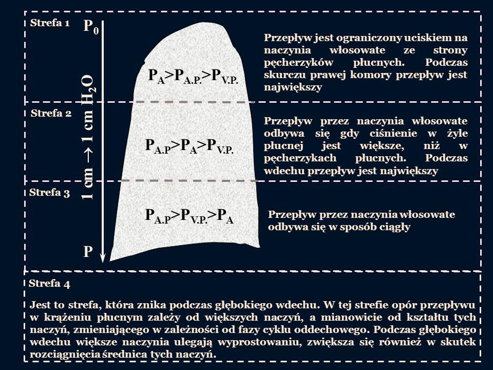 Strefa 1 Strefa 2 Strefa 3 P A >P A.P. >P V.P. Przepływ jest ograniczony uciskiem na naczynia włosowate ze strony pęcherzyków płucnych. Podczas skurcz