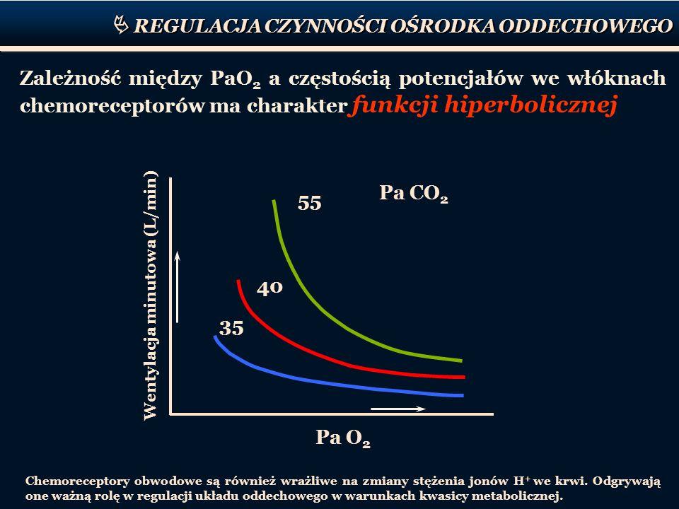 REGULACJA CZYNNOŚCI OŚRODKA ODDECHOWEGO Wentylacja minutowa (L/min) Pa O 2 Pa CO 2 35 40 55 Chemoreceptory obwodowe są również wrażliwe na zmiany stęż
