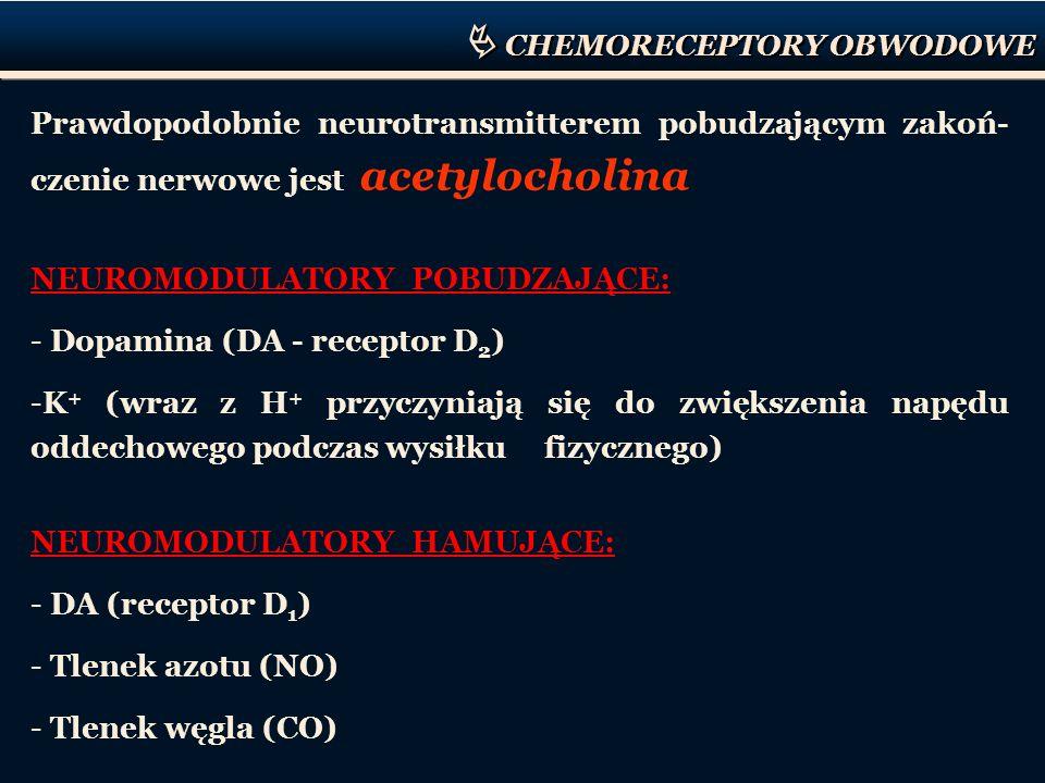 CHEMORECEPTORY OBWODOWE Prawdopodobnie neurotransmitterem pobudzającym zakoń- czenie nerwowe jest acetylocholina NEUROMODULATORY POBUDZAJĄCE: - Dopami