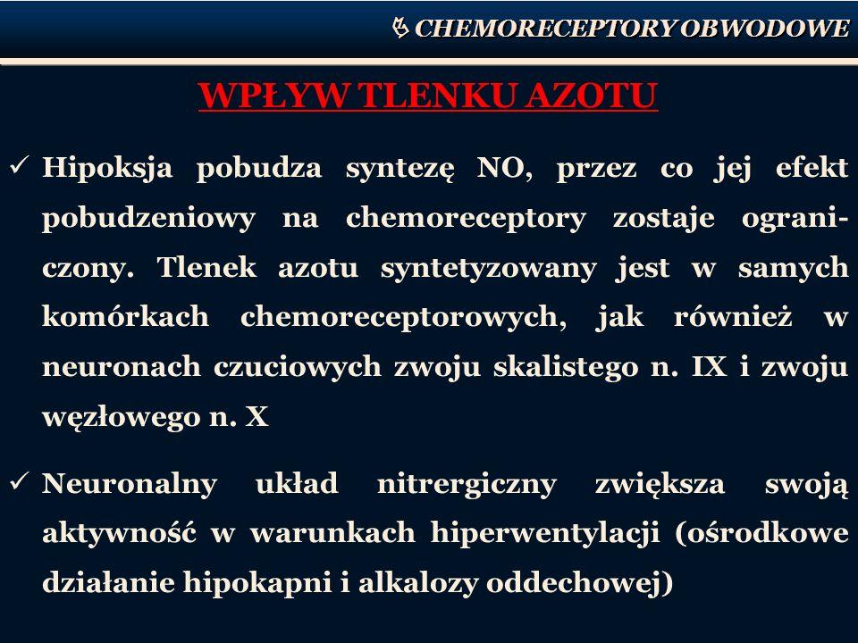 CHEMORECEPTORY OBWODOWE WPŁYW TLENKU AZOTU Hipoksja pobudza syntezę NO, przez co jej efekt pobudzeniowy na chemoreceptory zostaje ograni- czony. Tlene