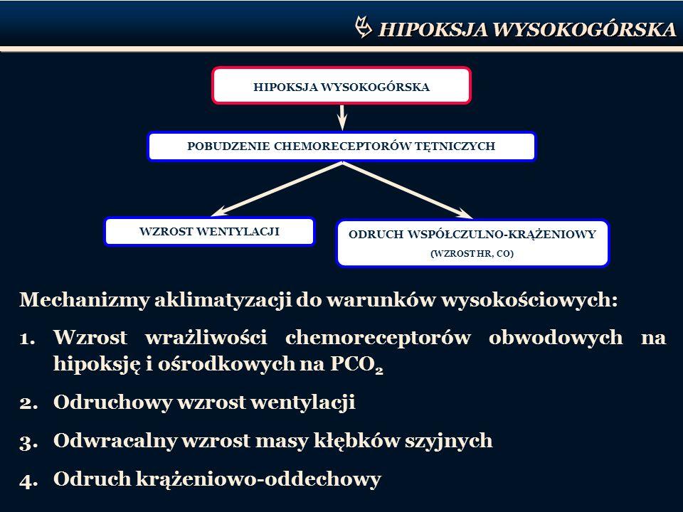 HIPOKSJA WYSOKOGÓRSKA POBUDZENIE CHEMORECEPTORÓW TĘTNICZYCH WZROST WENTYLACJI ODRUCH WSPÓŁCZULNO-KRĄŻENIOWY (WZROST HR, CO) Mechanizmy aklimatyzacji d