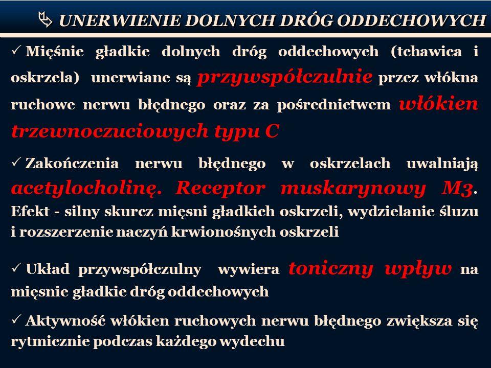 P o 2 (mmHg) P co 2 (mmHg) Powietrze atmosferyczne 1600.3 Powietrze pęcherzykowe 10040 Krew w naczyniach włosowa- tych pęcherzyków płucnych 10040 Krew tętnicza 9540 Krew żylna 4046 Tkanki3546 Ciśnienie parcjalne O 2 i CO 2 w powietrzu oraz prężność O 2 i CO 2 we krwi i tkankach WYMIANA GAZOWA