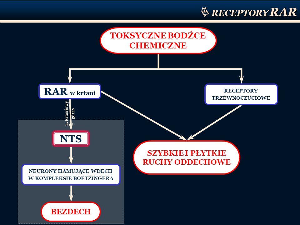 RECEPTORY RAR TOKSYCZNE BODŹCE CHEMICZNE RAR w krtani NTS RECEPTORY TRZEWNOCZUCIOWE SZYBKIE I PŁYTKIE RUCHY ODDECHOWE NEURONY HAMUJĄCE WDECH W KOMPLEK