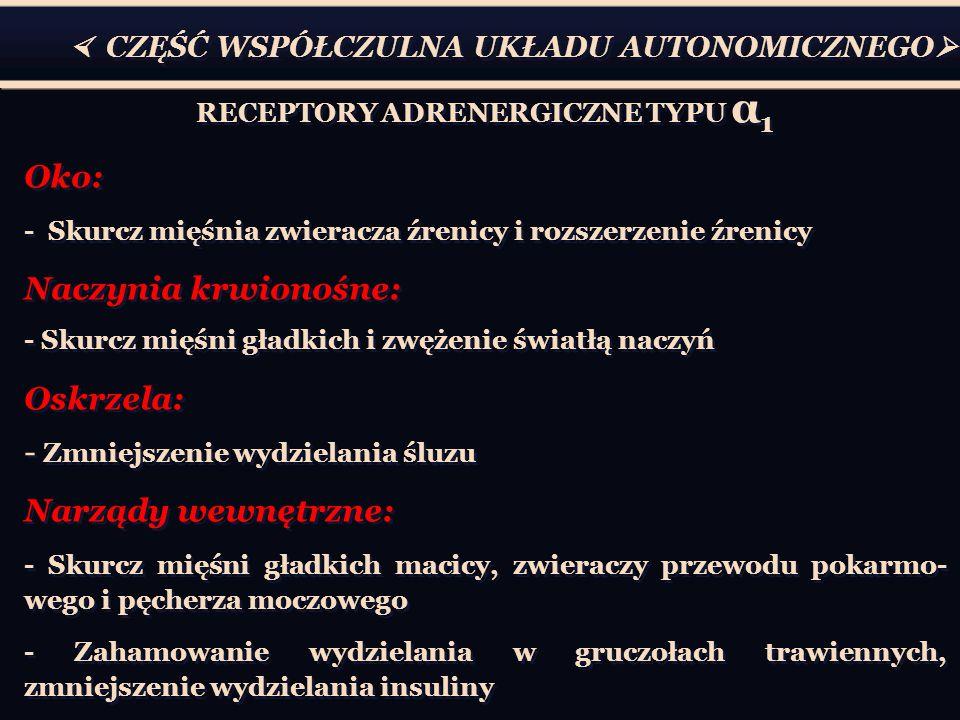 CZĘŚĆ WSPÓŁCZULNA UKŁADU AUTONOMICZNEGO RECEPTORY ADRENERGICZNE TYPU α 1 Oko: - Skurcz mięśnia zwieracza źrenicy i rozszerzenie źrenicy Naczynia krwio