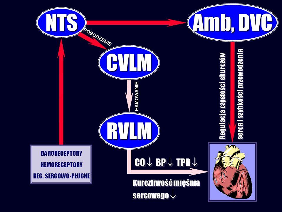Regulacja częstości skurczów serca i szybkości przewodzenia Regulacja częstości skurczów serca i szybkości przewodzenia CVLM NTS RVLM BARORECEPTORY HE
