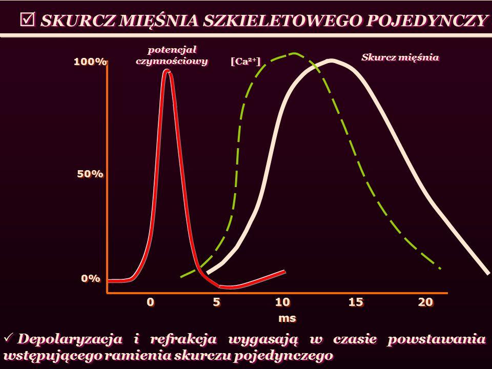 SKURCZ MIĘŚNIA SZKIELETOWEGO POJEDYNCZY 5 5 10 0 0 100% 50% 0% ms 15 20 Depolaryzacja i refrakcja wygasają w czasie powstawania wstępującego ramienia
