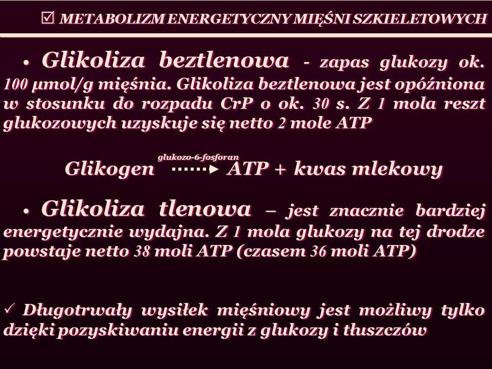 Glikoliza beztlenowa - zapas glukozy ok. 100 μmol/g mięśnia. Glikoliza beztlenowa jest opóźniona w stosunku do rozpadu CrP o ok. 30 s. Z 1 mola reszt