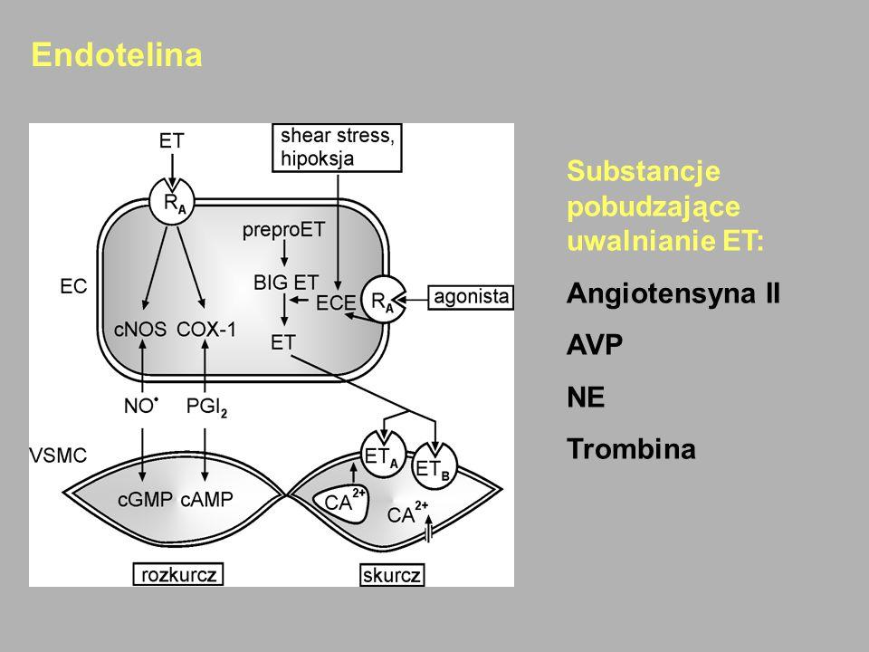 Endotelina Substancje pobudzające uwalnianie ET: Angiotensyna II AVP NE Trombina
