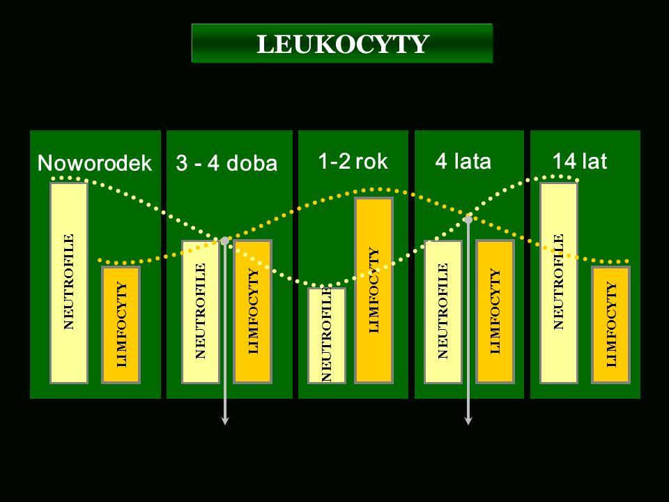 Noworodek3 - 4 doba 1-2 rok NEUTROFILE LIMFOCYTY NEUTROFILE LIMFOCYTY NEUTROFILE LIMFOCYTY 4 lata NEUTROFILE LIMFOCYTY 14 lat NEUTROFILE LIMFOCYTY