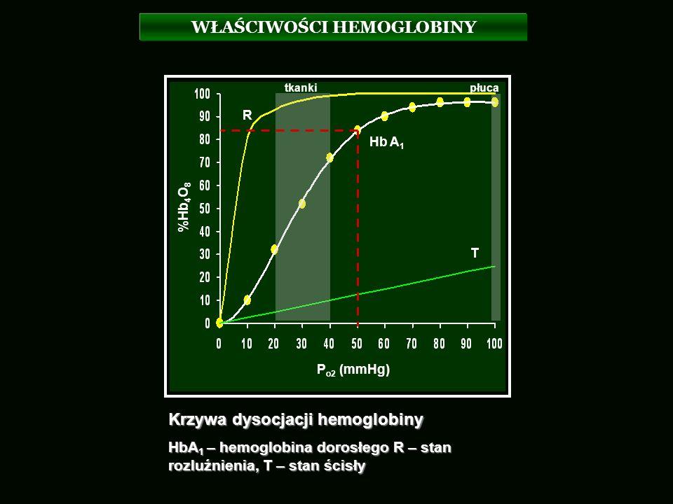 WŁAŚCIWOŚCI HEMOGLOBINY tkankipłuca P o2 (mmHg) %Hb 4 O 8 R T Hb A 1 Krzywa dysocjacji hemoglobiny HbA 1 – hemoglobina dorosłego R – stan rozluźnienia