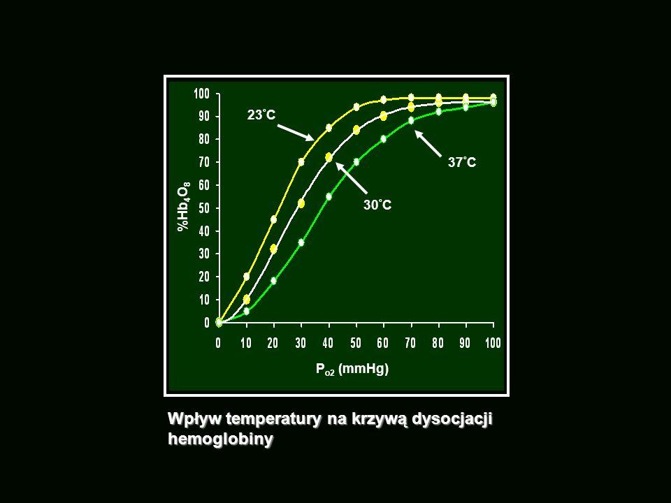 P o2 (mmHg) %Hb 4 O 8 Wpływ temperatury na krzywą dysocjacji hemoglobiny 37 ° C 30 ° C 23 ° C