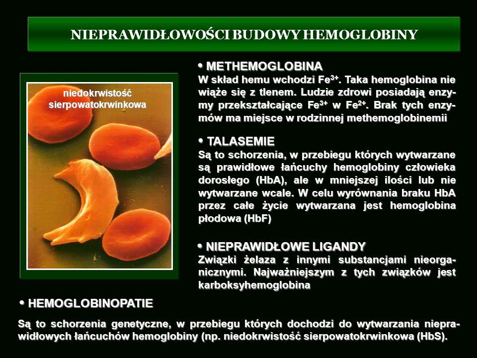 NIEPRAWIDŁOWOŚCI BUDOWY HEMOGLOBINY HEMOGLOBINOPATIE HEMOGLOBINOPATIE Są to schorzenia genetyczne, w przebiegu których dochodzi do wytwarzania niepra-