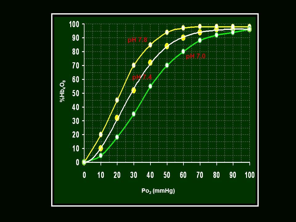 Po 2 (mmHg) %Hb 4 O 8 pH 7.0 pH 7.4 pH 7.8