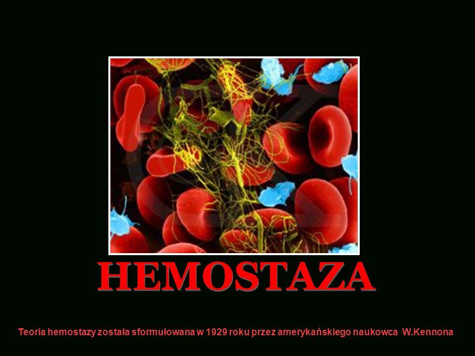 HEMOSTAZA Teoria hemostazy została sformułowana w 1929 roku przez amerykańskiego naukowca W.Kennona