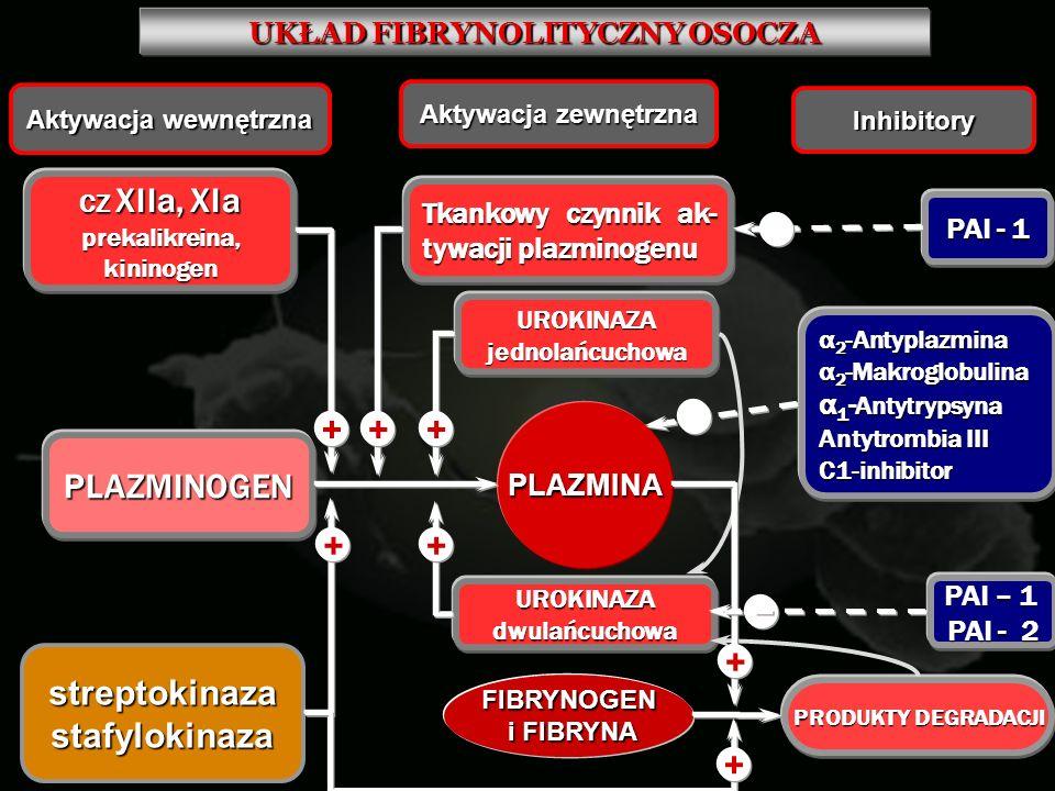 UKŁAD FIBRYNOLITYCZNY OSOCZA PLAZMINA Aktywacja wewnętrzna Aktywacja zewnętrzna Inhibitory CZ XIIa, XIa prekalikreina, kininogen PLAZMINOGEN + strepto