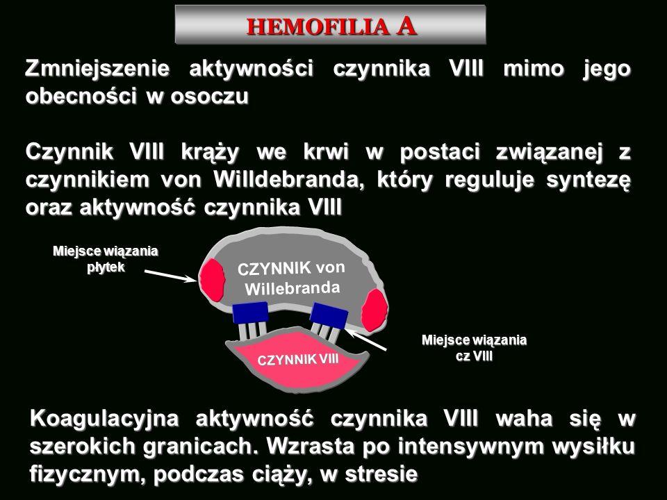 HEMOFILIA A Zmniejszenie aktywności czynnika VIII mimo jego obecności w osoczu Czynnik VIII krąży we krwi w postaci związanej z czynnikiem von Willdeb