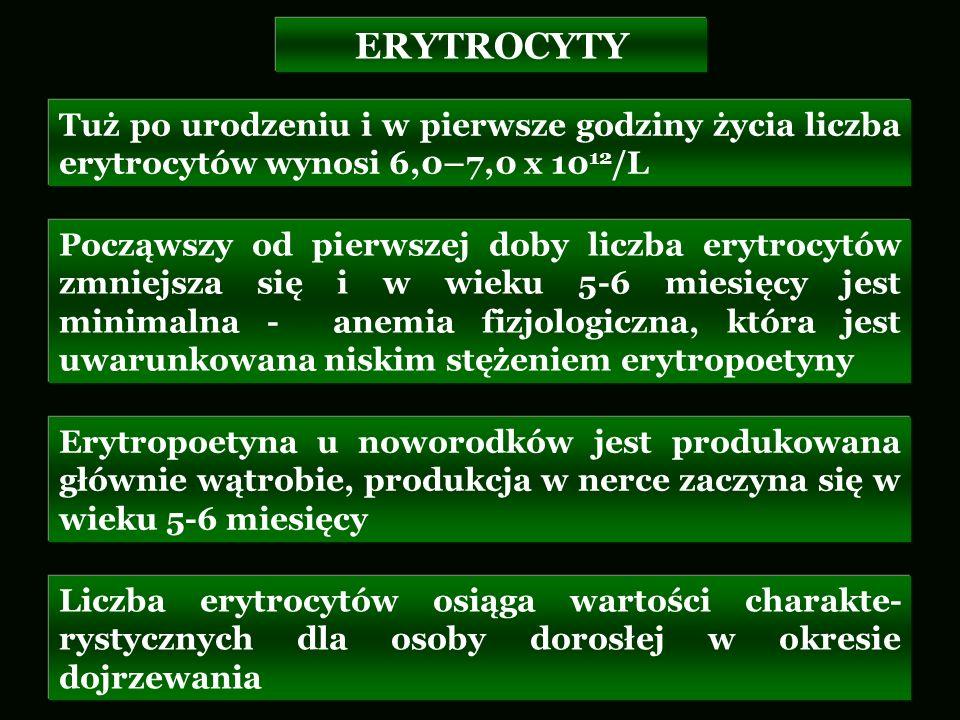 Tuż po urodzeniu i w pierwsze godziny życia liczba erytrocytów wynosi 6,0–7,0 x 10 12 /L Począwszy od pierwszej doby liczba erytrocytów zmniejsza się