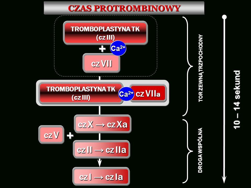 CZAS PROTROMBINOWY TROMBOPLASTYNA TK (cz III) + CZ VII Ca 2+ + CZ V CZ I CZ Ia CZ VII a TROMBOPLASTYNA TK (cz III) Ca 2+ CZ X CZ Xa CZ II CZ IIa TOR Z