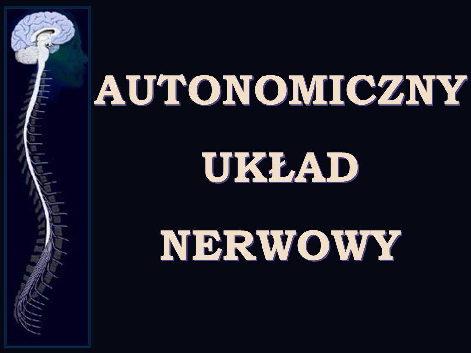 β α α γ δ Na+ Na+ Na+ Na+ Na+ Na+ Na+K+ K+ K+ K+ K+ K+ K+ K+ K+ Na+ Na+ ACh -65 -90 mV 0 ACh Na+ Na+ Na+ Na+ RECEPTOR NIKOTYNOWY DLA ACETYLOCHOLINY A
