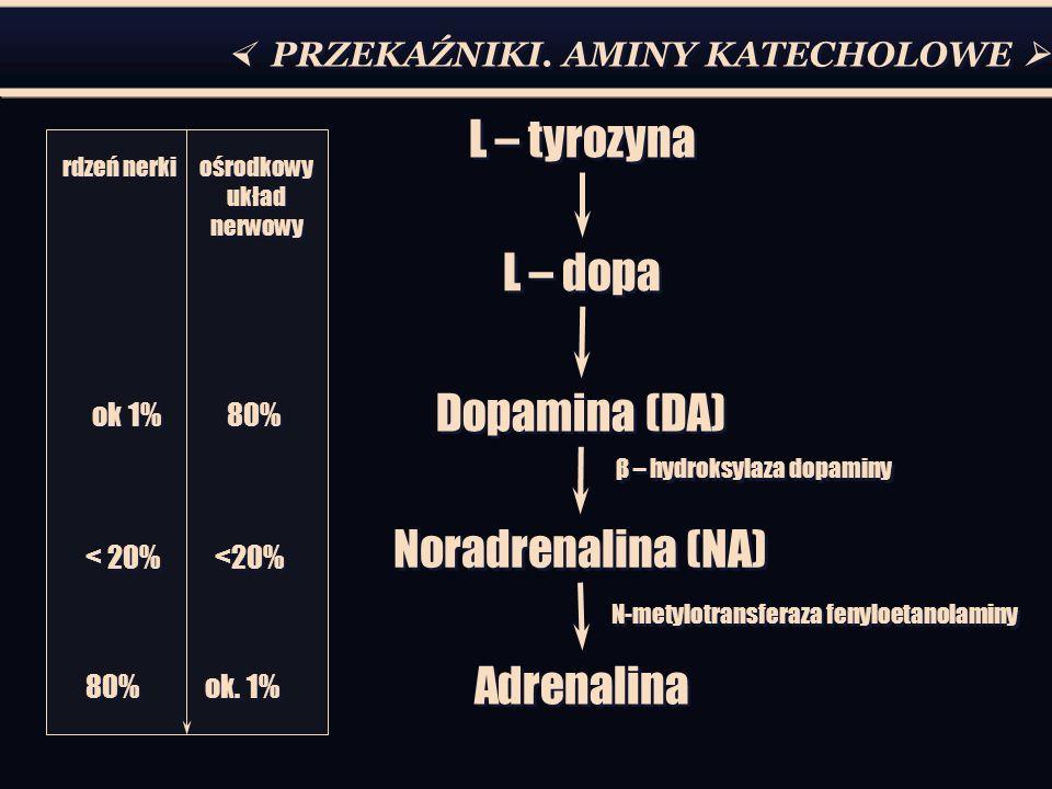 PRZEKAŹNIKI. AMINY KATECHOLOWE L – tyrozyna L – dopa Dopamina (DA) Noradrenalina (NA) Adrenalina rdzeń nerki ośrodkowy układ nerwowy ok 1% 80% < 20% <