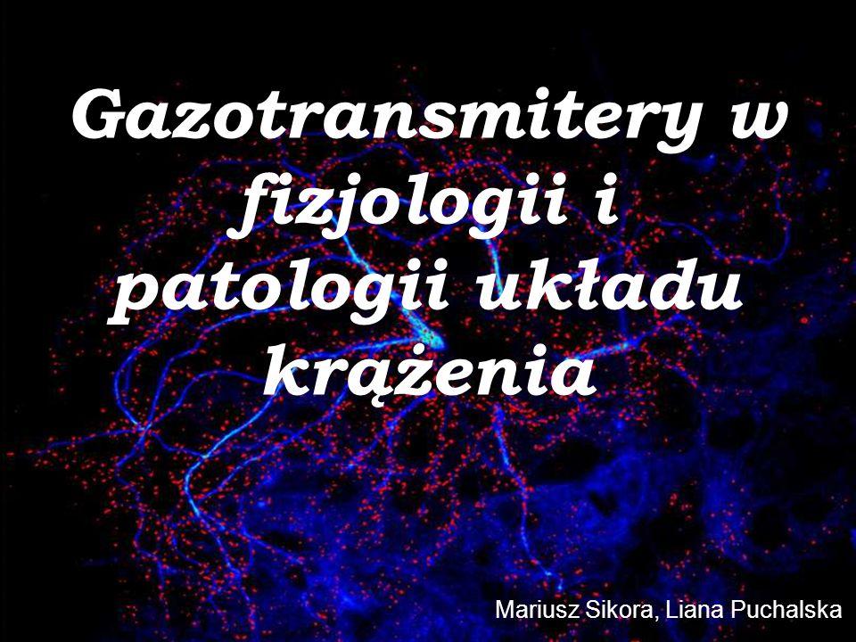 Działanie tlenku azotu (4) Układ nerwowy 1.LTP, LTD (rec.