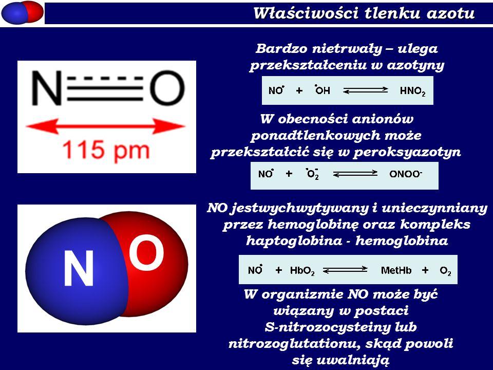 Właściwości tlenku azotu N O Bardzo nietrwały – ulega przekształceniu w azotyny W obecności anionów ponadtlenkowych może przekształcić się w peroksyaz
