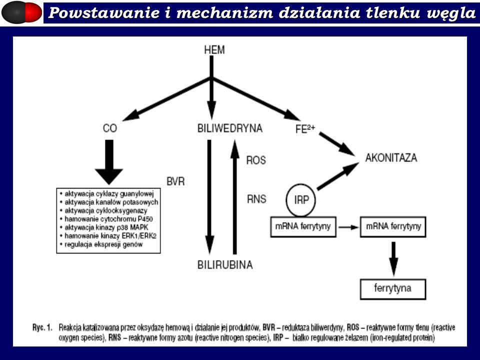 Powstawanie i mechanizm działania tlenku węgla