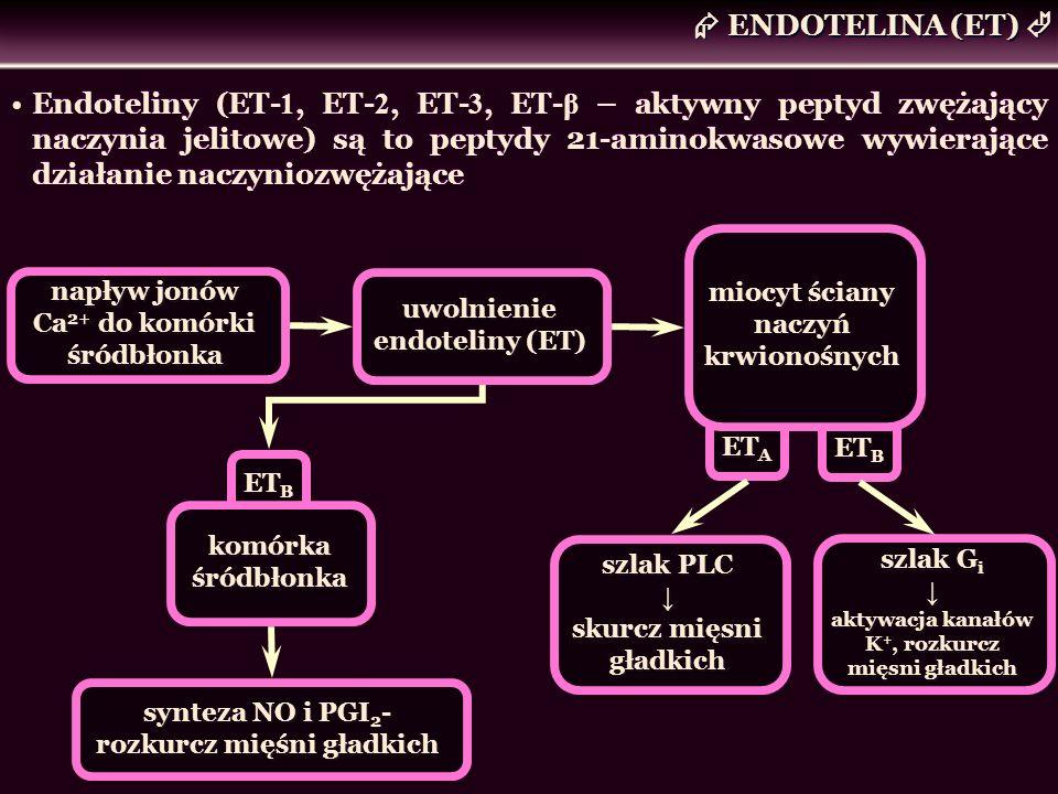 ENDOTELINA (ET) Endoteliny (ET- 1, ET- 2, ET- 3, ET- β – aktywny peptyd zwężający naczynia jelitowe) są to peptydy 21-aminokwasowe wywierające działan