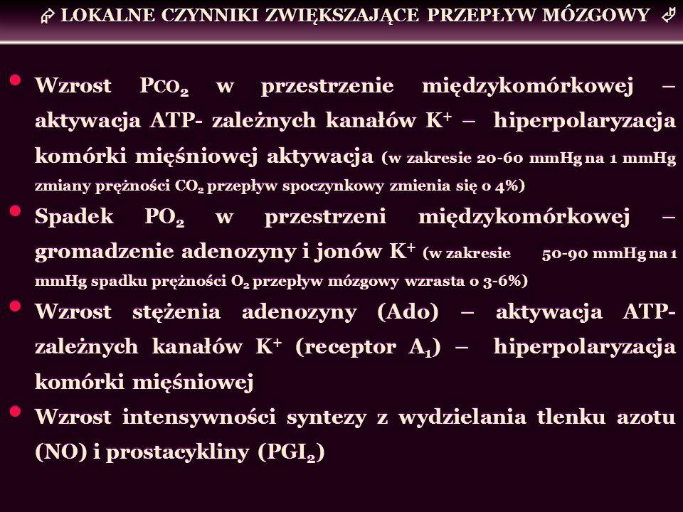 Wzrost P CO 2 w przestrzenie międzykomórkowej – aktywacja ATP- zależnych kanałów K + – hiperpolaryzacja komórki mięśniowej aktywacja (w zakresie 20-60