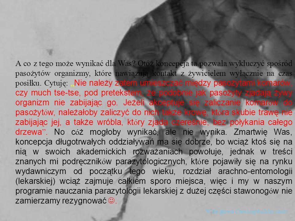 W tle głowa Ctenocephalides canis A co z tego może wynikać dla Was? Otóż koncepcja ta pozwala wykluczyć spośród pasożytów organizmy, które nawiązują k
