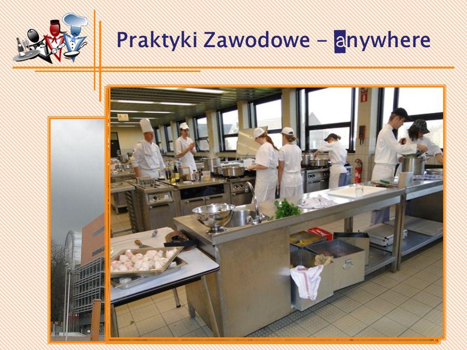 Praktyki Zawodowe - B elgia (2009-2011)
