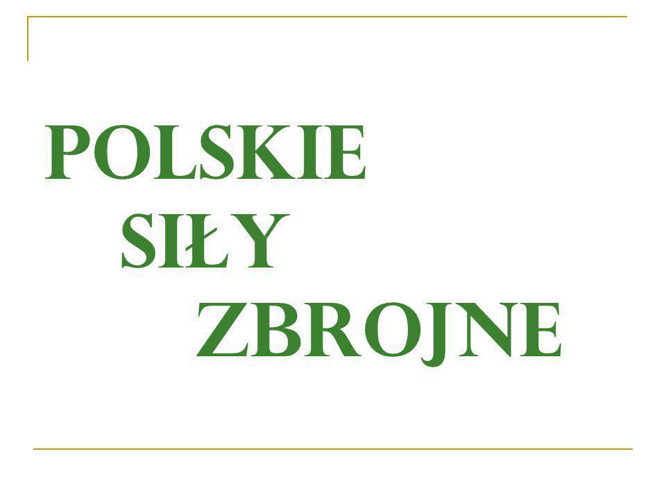 Siły Zbrojne Rzeczypospolitej Polskiej służą ochronie niepodległości państwa i niepodzielności jego terytorium oraz zapewnieniu bezpieczeństwa i nienaruszalności jego granic.