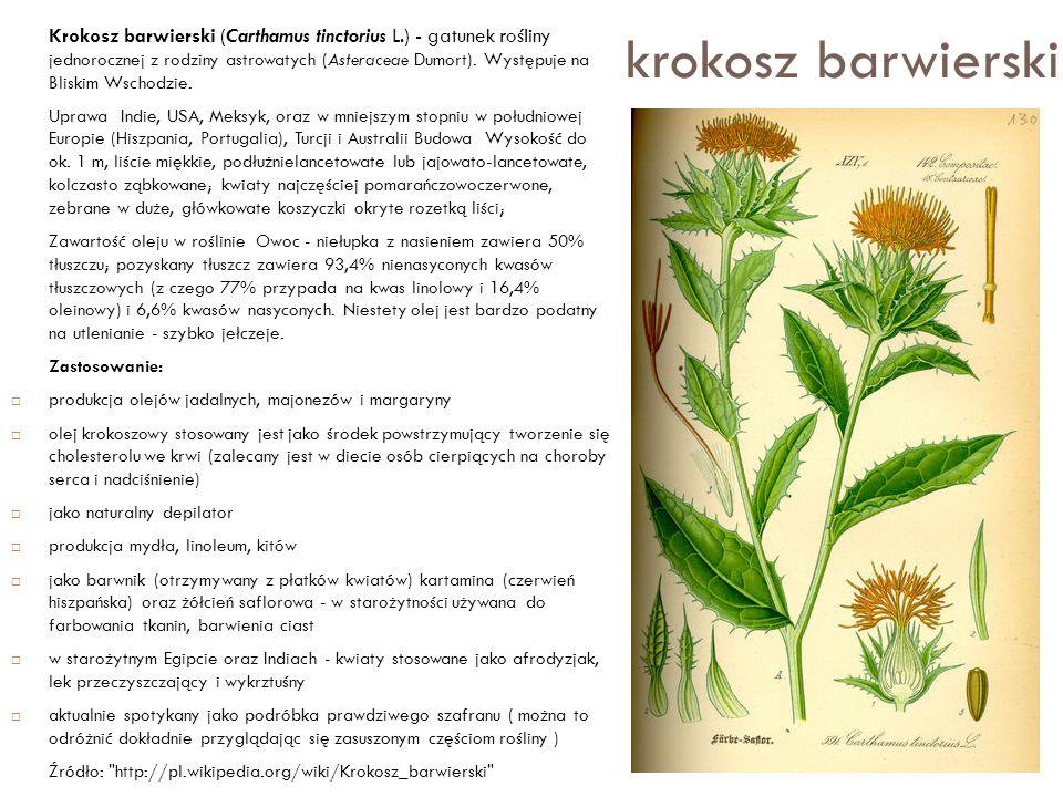 krokosz barwierski Krokosz barwierski (Carthamus tinctorius L.) - gatunek rośliny jednorocznej z rodziny astrowatych (Asteraceae Dumort). Występuje na