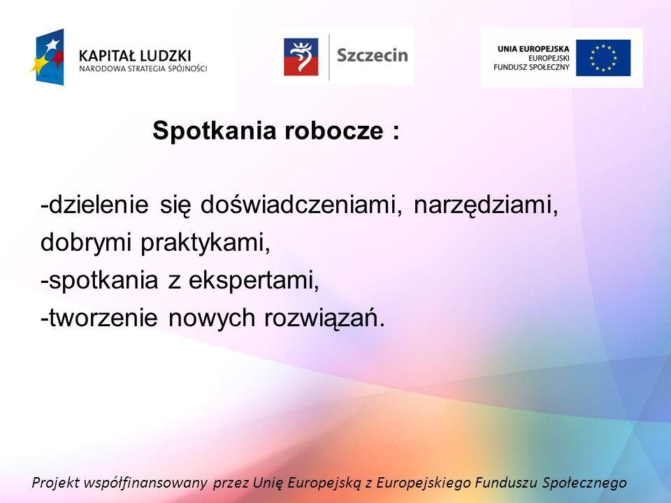 Projekt współfinansowany przez Unię Europejską z Europejskiego Funduszu Społecznego Spotkania robocze : -dzielenie się doświadczeniami, narzędziami, d
