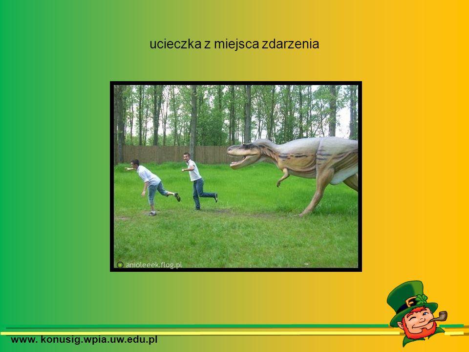 www. konusig.wpia.uw.edu.pl ucieczka z miejsca zdarzenia