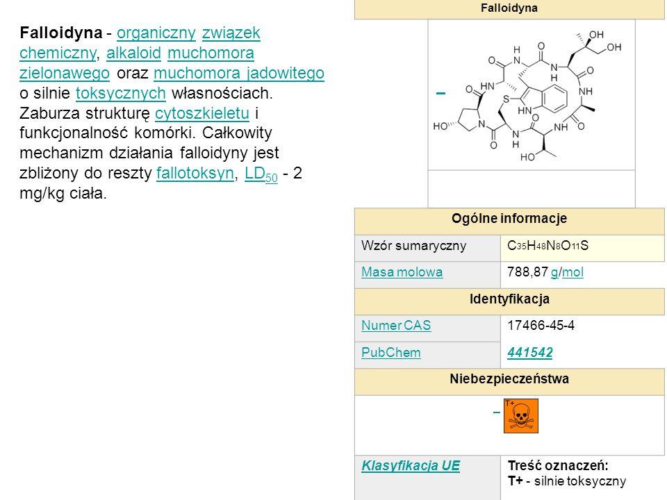 Falloidyna Ogólne informacje Wzór sumarycznyC 35 H 48 N 8 O 11 S Masa molowa788,87 g/molgmol Identyfikacja Numer CAS17466-45-4 PubChem441542 Niebezpie