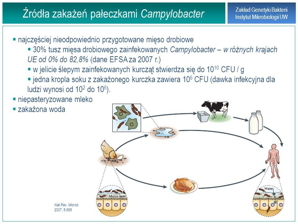 Zakład Genetyki Bakterii Instytut Mikrobiologii UW Zapobieganie kampylobakteriozie Europejski program CARMA ( Campylobacter Risk Management and Assessment ) - podniesienie poziomu higieny na farmach i w zakładach produkcji mięsa drobiowego, edukacja społeczeństwa – metody mało skuteczne Bakteriofagi specyficzne wobec pałeczek Campylobacter Immunoprofilaktyka wprowadzenie powszechnego stosowania szczepień ochronnych dla kurcząt.