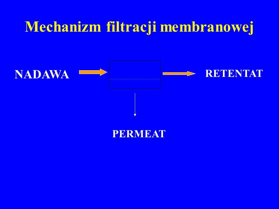 Prowadzenie strumieni w modułach membranowych