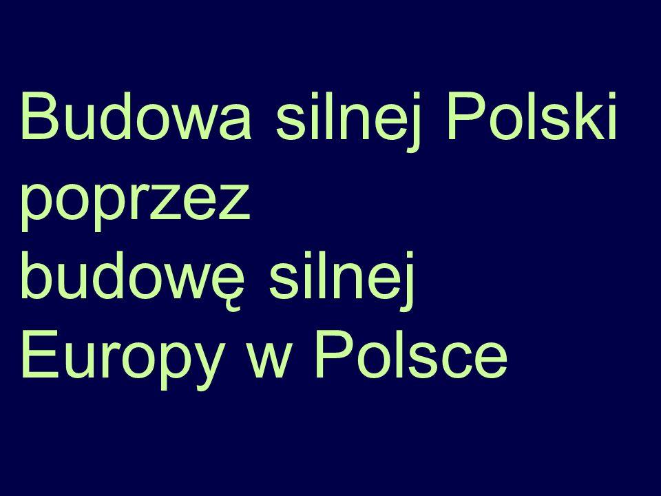 Budowa silnej Polski poprzez budowę silnej Europy w Polsce