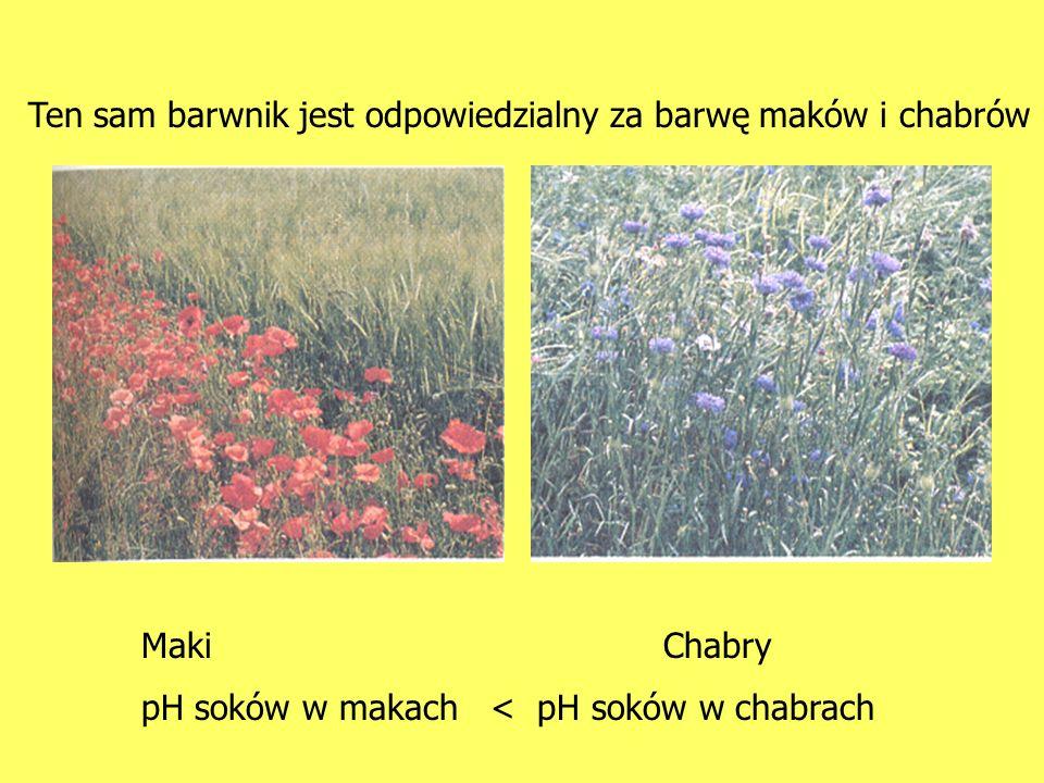 MakiChabry pH soków w makach < pH soków w chabrach Ten sam barwnik jest odpowiedzialny za barwę maków i chabrów