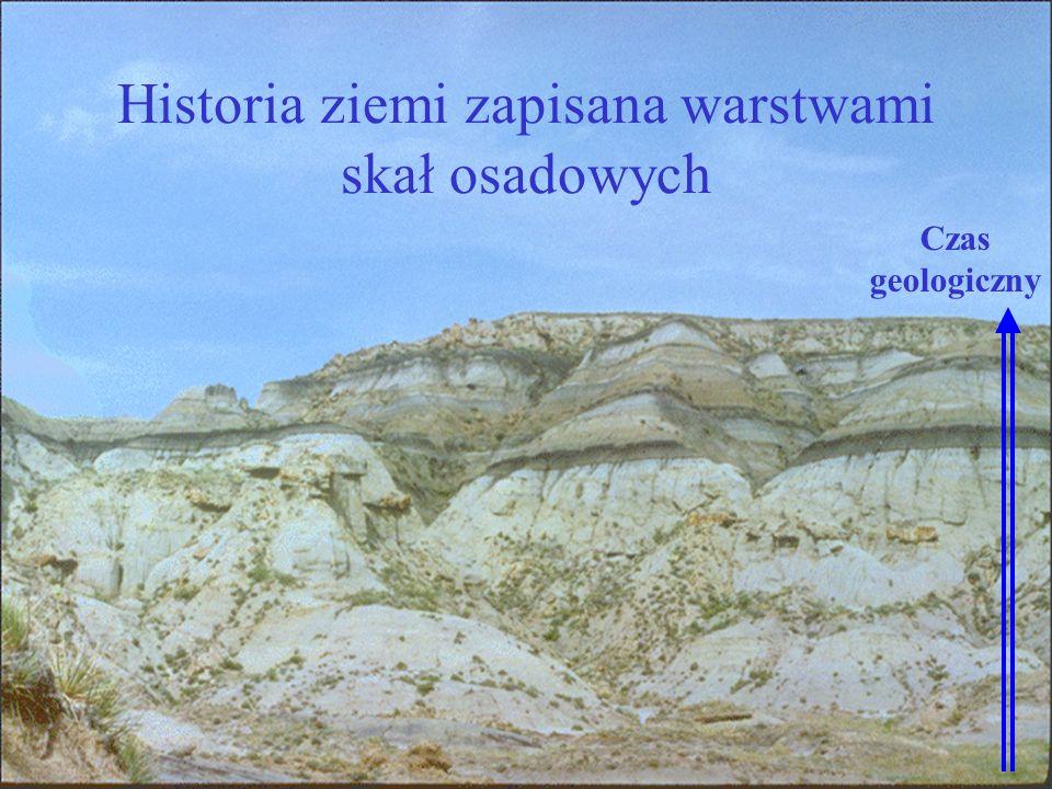 Czas geologiczny Historia ziemi zapisana warstwami skał osadowych