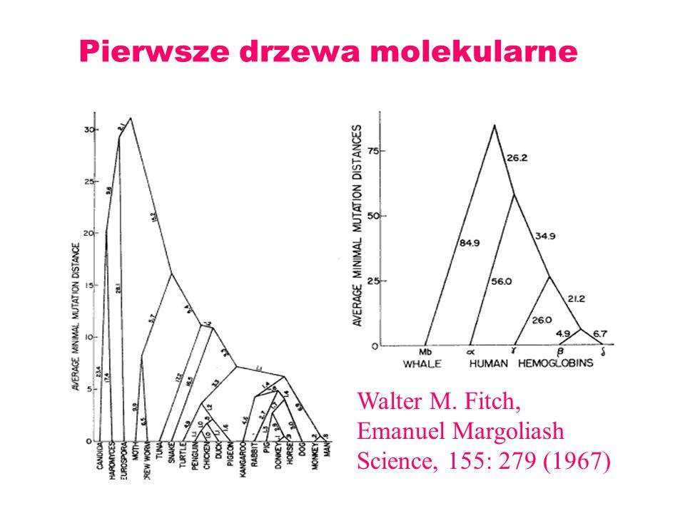 Pierwsze drzewa molekularne Walter M. Fitch, Emanuel Margoliash Science, 155: 279 (1967)