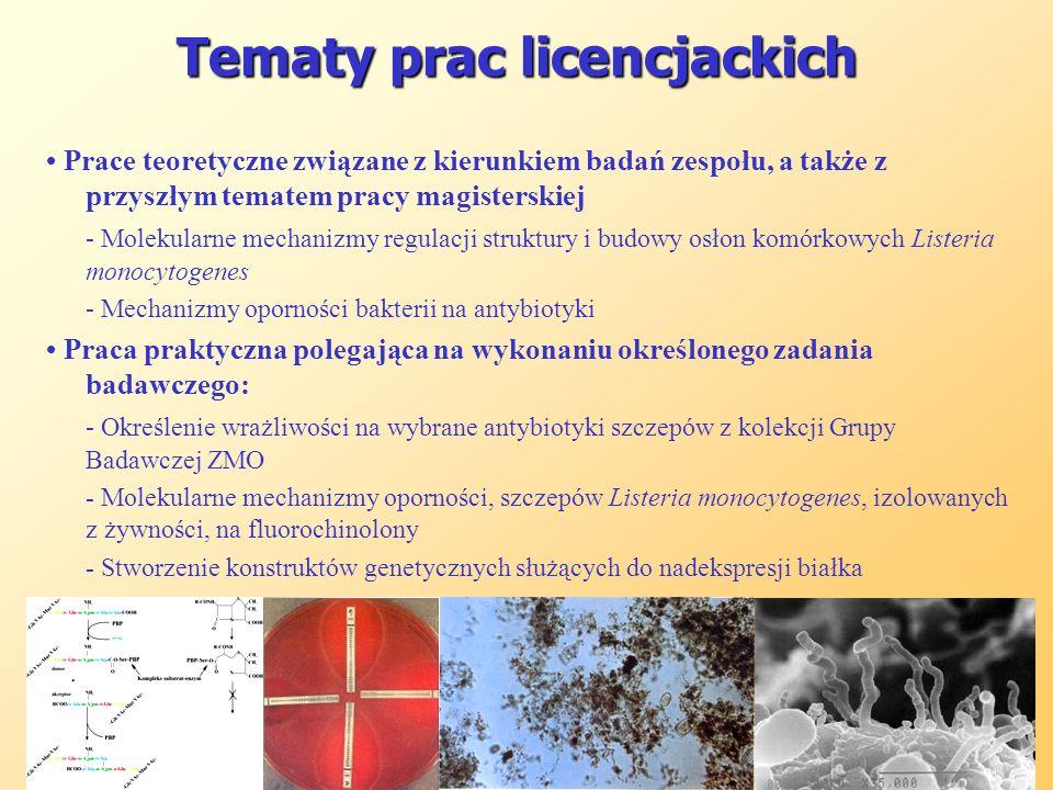 Tematy prac licencjackich Tematy prac licencjackich Prace teoretyczne związane z kierunkiem badań zespołu, a także z przyszłym tematem pracy magisters