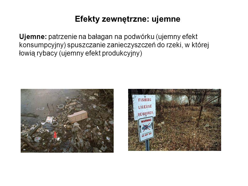 Ujemne: patrzenie na bałagan na podwórku (ujemny efekt konsumpcyjny) spuszczanie zanieczyszczeń do rzeki, w której łowią rybacy (ujemny efekt produkcyjny) Efekty zewnętrzne: ujemne