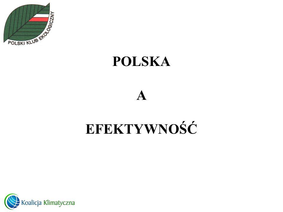 POLSKA A EFEKTYWNOŚĆ